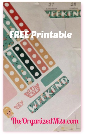 "Organization for the ""Miss"" Lifestyle – FREE PRINTABLE"